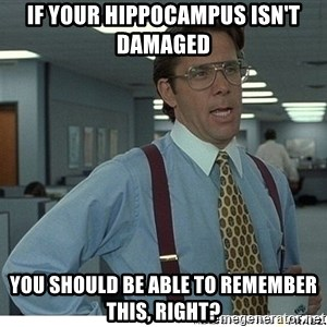 That would be great - If your hippocampus isn't damaged  You should be able to remember this, right?