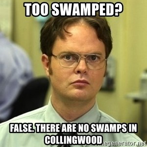 Dwight Schrute - Too swamped? False. There are no swamps in collingwood