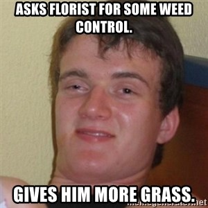 Stoner Stanley - asks florist for some weed control. gives him more grass.