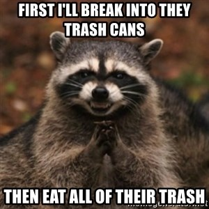 evil raccoon - first I'll break into they trash cans  then eat all of their trash