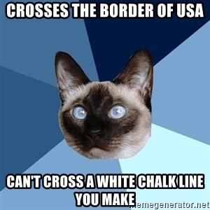 Chronic Illness Cat - Crosses the border of usa Can't cross a white chalk line you make
