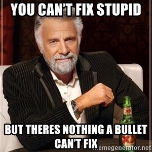 The Most Interesting Man In The World - You Can't Fix Stupid  But Theres Nothing A Bullet Can't Fix