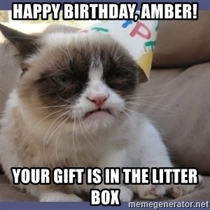 Birthday Grumpy Cat - HAPPY BIRTHDAY, AMBER! YOUR GIFT IS IN THE LITTER BOX