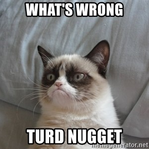 Grumpy cat good - What's Wrong Turd nugget