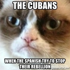 angry cat asshole - The cubans  When the Spanish try to stop their rebellion