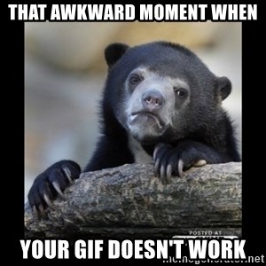 sad bear - that awkward moment when your gif doesn't work