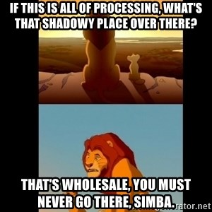 Lion King Shadowy Place - If this is all of Processing, what's that shadowy place over there? That's Wholesale, you must never go there, Simba.