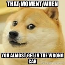 dogeee - That moment when  you almost get in the wrong car