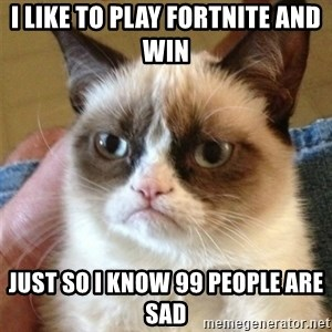 Grumpy Cat  - i like to play fortnite and win  just so i know 99 people are sad