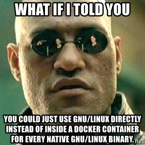 What if I told you / Matrix Morpheus - What if I told you You could just use GNU/Linux directly instead of inside a docker container for every native GNU/Linux binary.
