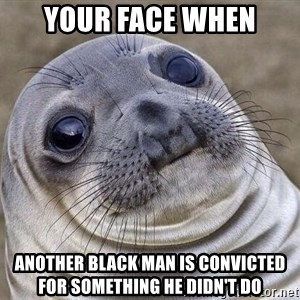 Awkward Seal - your face when another black man is convicted for something he didn't do
