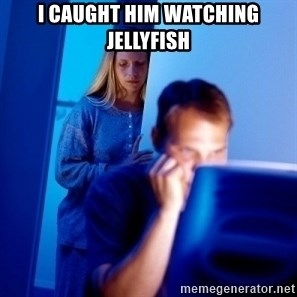 Internet Husband - i caught him watching JellyFish
