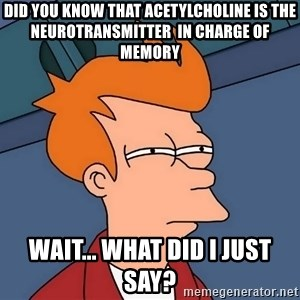 Futurama Fry - Did you know that Acetylcholine is the neurotransmitter  in charge of memory wait... what did i just say?