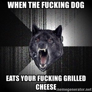 Insanity Wolf - When the fucking dog eats your fucking grilled cheese