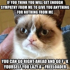 Grumpy Cat  - If you think you will get enough sympathy from me to give you anything for nothing from me You can go right ahead and go f**k yourself you lazy a** freeloader