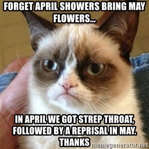 Grumpy Cat  - Forget April showers bring May flowers... In April we got strep throat, followed by a reprisal in May. Thanks