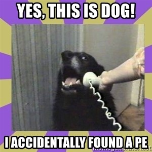 Yes, this is dog! - yes, this is dog! i accidentally found a PE