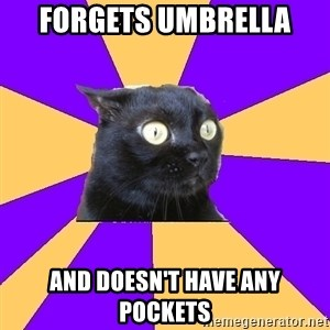 Anxiety Cat - Forgets umbrella And doesn't have any pockets