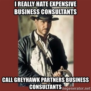 Indiana Jones - I really hate expensive      business consultants Call GreyHawk Partners Business Consultants