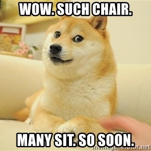 so doge - wow. such chair. many sit. so soon.