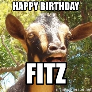 Illogical Goat - Happy Birthday  Fitz