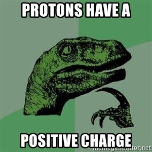 Philosoraptor - Protons have a  Positive charge