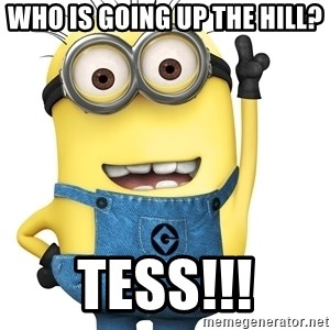 Despicable Me Minion - Who is going up the Hill? Tess!!!