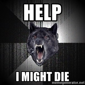 Insanity Wolf - HELP I MIGHT DIE