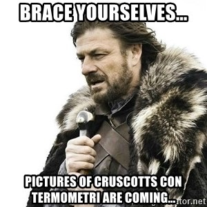 Brace Yourself Winter is Coming. - Brace yourselves... pictures of cruscotts con termometri are coming...
