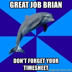 Drama Dolphin - GREAT JOB BRIAN DON'T FORGET YOUR TIMESHEET