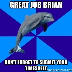 Drama Dolphin - GREAT JOB BRIAN DON'T FORGET TO SUBMIT YOUR TIMESHEET