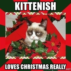 GRUMPY CAT ON CHRISTMAS - kittenish loves christmas really