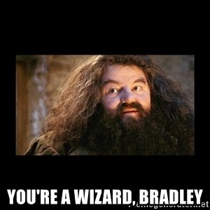 You're a Wizard Harry - You're a wizard, Bradley