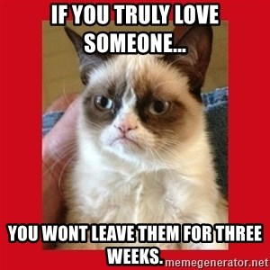 No cat - if you truly love someone... you wont leave them for three weeks.