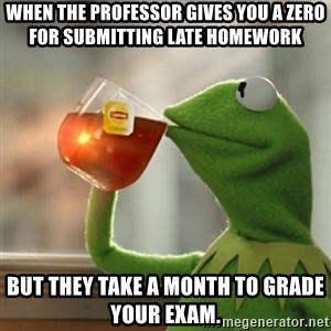 Kermit The Frog Drinking Tea - When the professor gives you a zero for submitting late homework but they take a month to grade your exam.