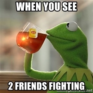 Kermit The Frog Drinking Tea - When you see 2 friends fighting
