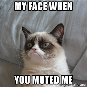 Grumpy cat good - My face when you muted me