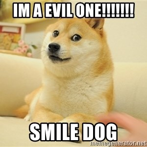 so doge - im a evil one!!!!!!! smile dog