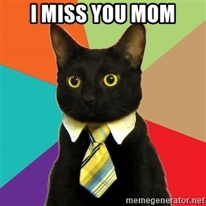 Business Cat - i miss you mom