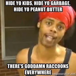 Hide Yo Kids - Hide yo kids, hide yo garbage, hide yo peanut butter There's goddamn raccoons everywhere
