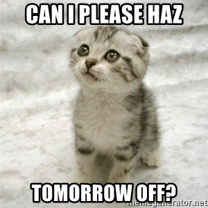 Can haz cat - can i please haz tomorrow off?