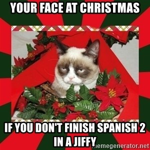 GRUMPY CAT ON CHRISTMAS - Your face at christmas if you don't finish spanish 2 in a jiffy