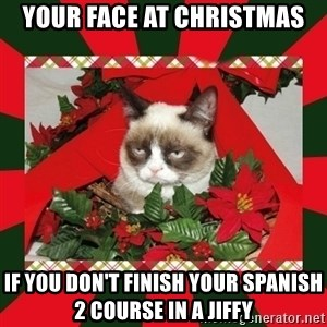 GRUMPY CAT ON CHRISTMAS - your face at christmas if you don't finish your spanish 2 course in a jiffy