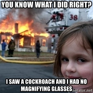 Disaster Girl - you know what i did right? i saw a cockroach and i had no magnifying glasses