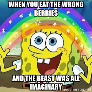 Imagination - when you eat the wrong berries  and the beast was all imaginary