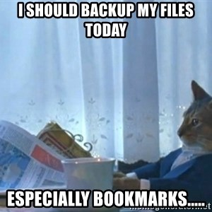 Sophisticated Cat - I should backup my files today Especially bookmarks.....