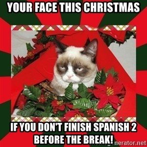 GRUMPY CAT ON CHRISTMAS - Your face this christmas if you don't finish spanish 2 before the break!