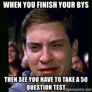 crying peter parker - when you finish your BYS Then see you have to take a 50 question test