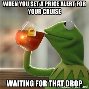 Kermit The Frog Drinking Tea - When you set a price alert for your cruise Waiting for that drop