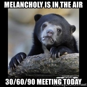 sad bear - Melancholy Is In The Air 30/60/90 Meeting Today